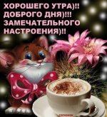 Хорошего дня и доброго вечера – Открытки с пожеланием доброго утра, дня, вечера и спокойной ночи