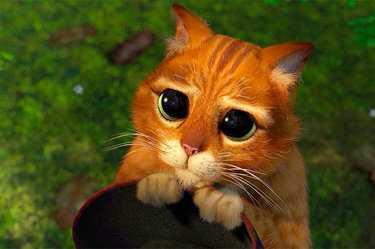 49a9299e9a79 Милые мультяшные котики картинки – 37 карточек в коллекции «Няшные ...